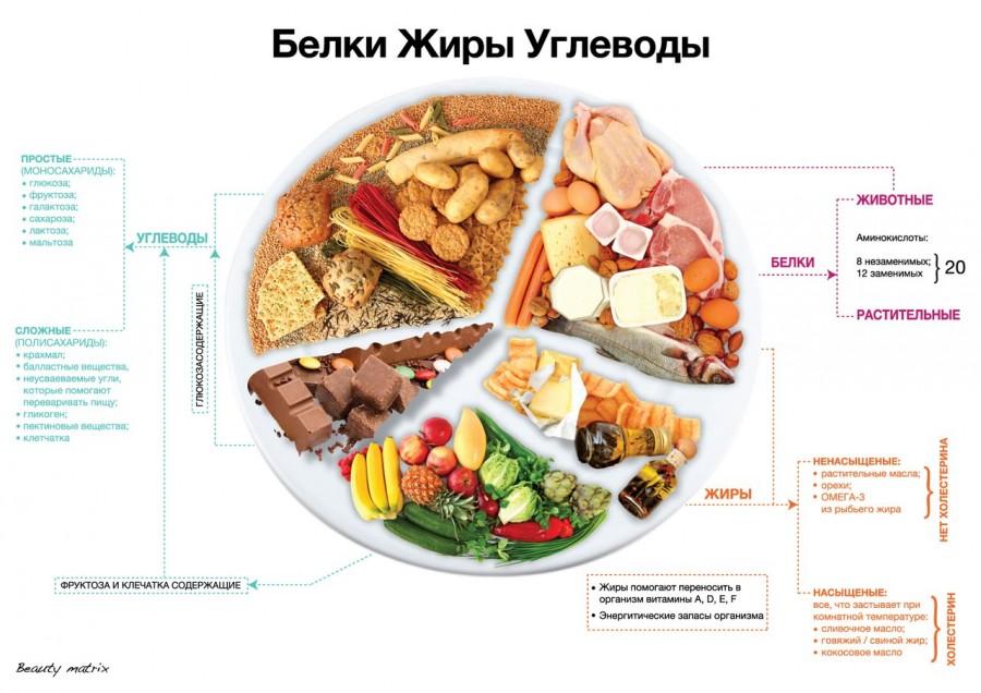 О дневнике для питания: правила распределения калорий в течение дня