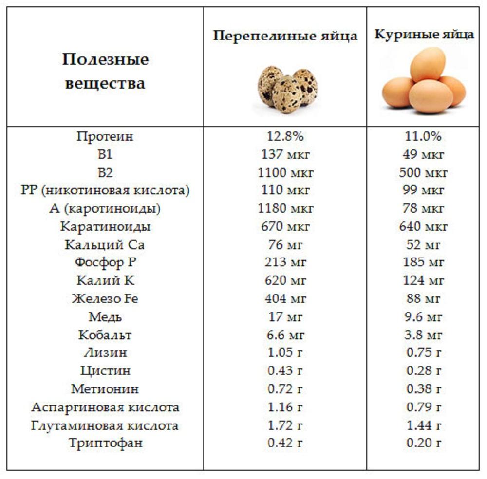 Польза и вред яичного желтка, состав, пищевая ценность, мифы и реальность