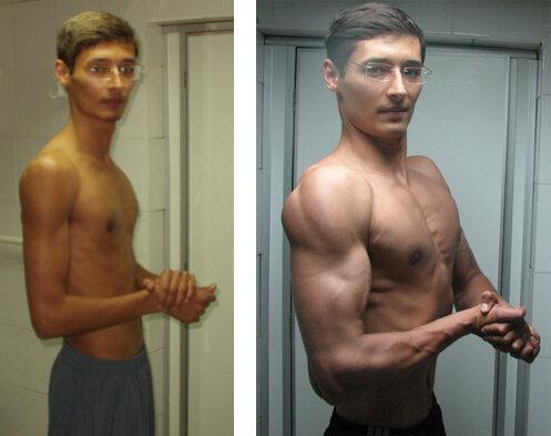 За сколько можно накачаться и за счет чего растут мышцы?
