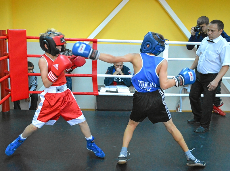 20 лучших школ и секций бокса для начинающих взрослых в москве: адреса и цены