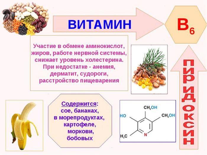 Витамин в12: для чего нужен организму, симптомы нехватки, источники