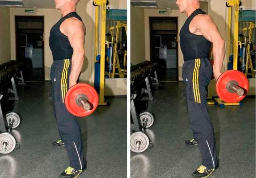 Тяга штанги за спиной стоя: техинка выполнения