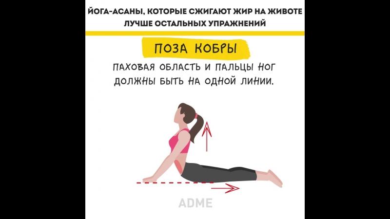 Йога для начинающих в домашних условиях: 30 основных асан с картинками и описанием