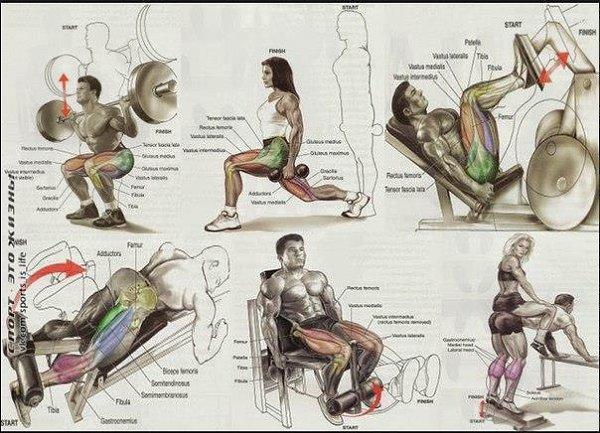 Упражнения со стулом для похудения: лучшие для пресса, ягодиц, для живота, ног, рук, не вставая, комплекс | xn--90acxpqg.xn--p1ai