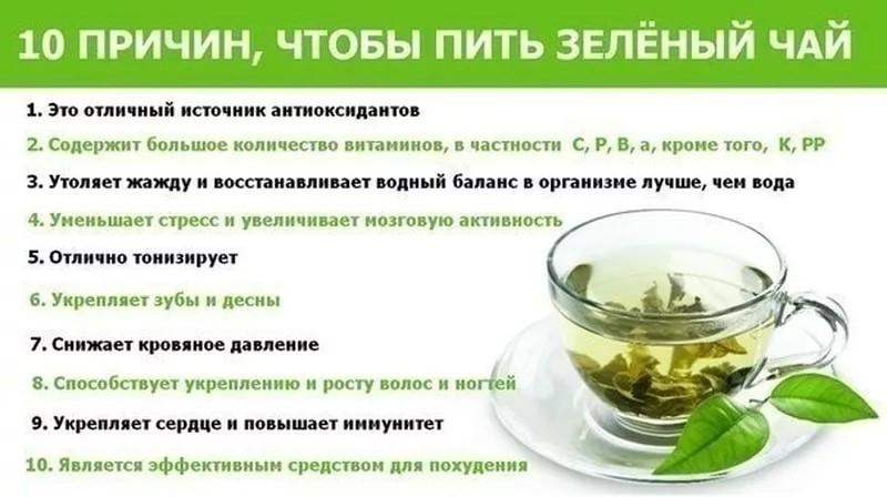 Вред и польза чая для здоровья
