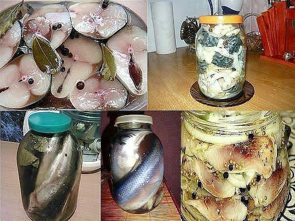 Можно ли засолить рыбу за 2 часа: полностью безопасный рецепт соленой горбуши — не отличить от семги!