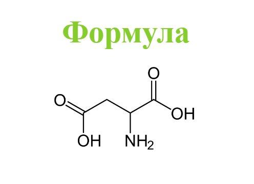 Аспарагиновая кислота: польза и вред, как принимать DAA в бодибилдинге