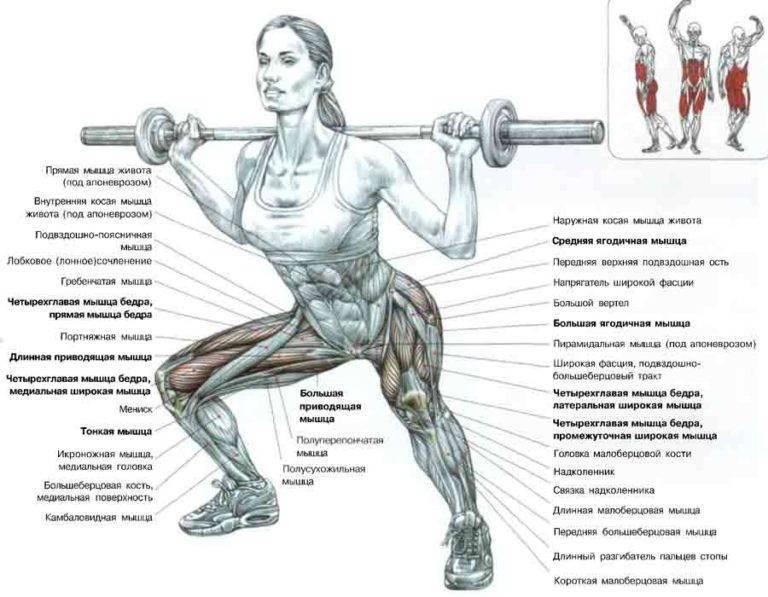 Лучшие программы тренировок для накаченных ног девушкам