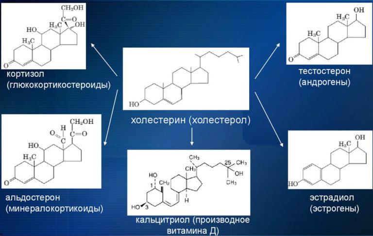 Кортизол: что делать, если гормон стресса повышен