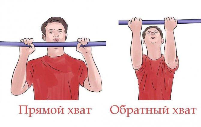 Подтягивания обратным хватом - какие мышцы работают? советы, рекомендации