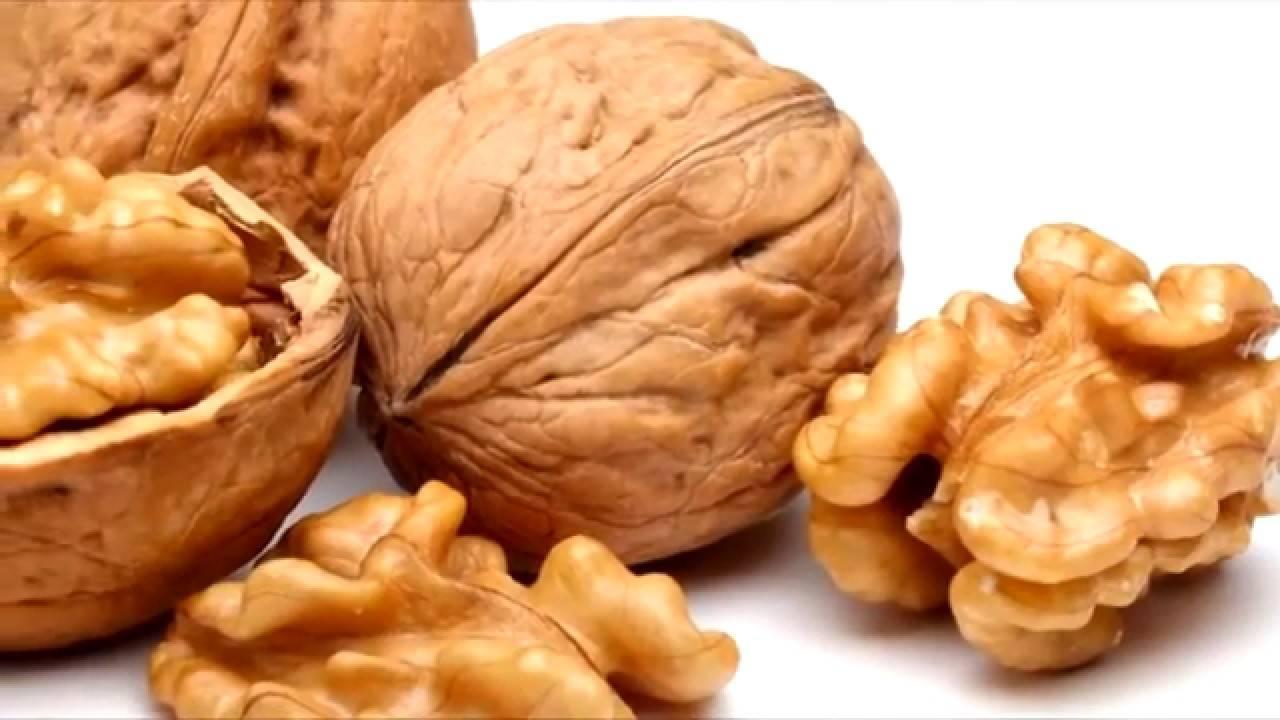 Полезные орехи для спортсменов. орехи для бодибилдеров