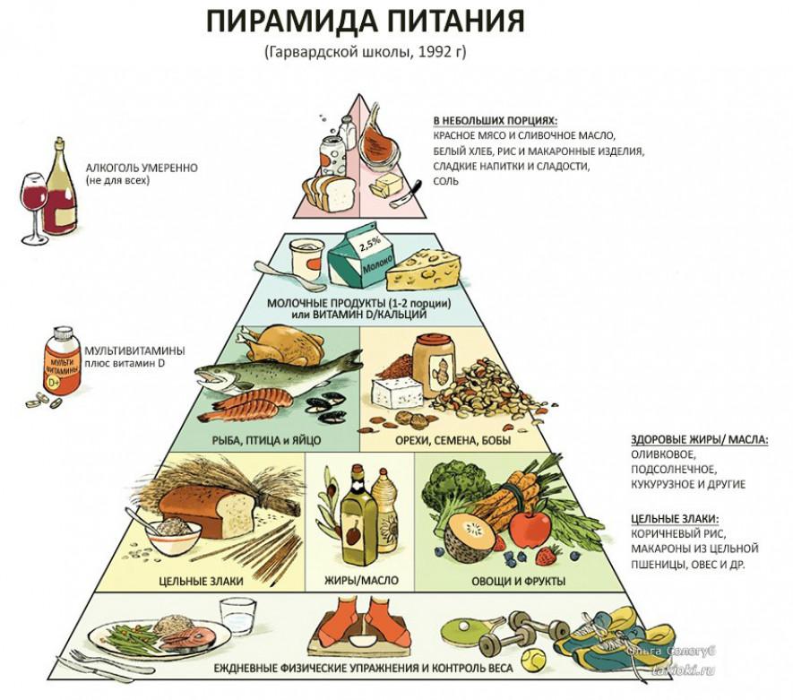 Что такое пирамида здорового питания. пирамида здорового питания. | здоровое питание