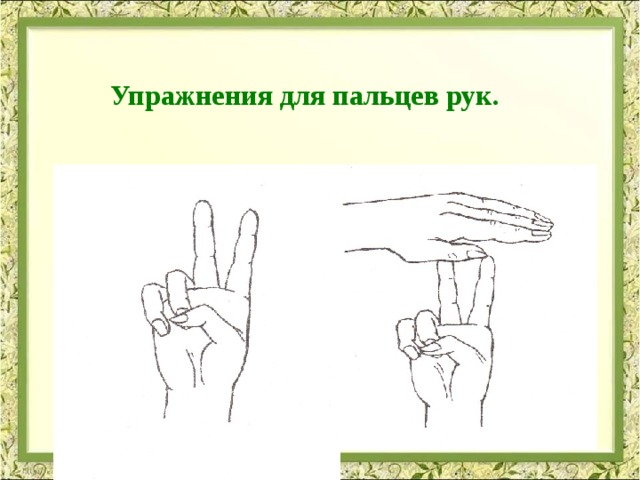 Тренировка пальцев и развитие моторики
