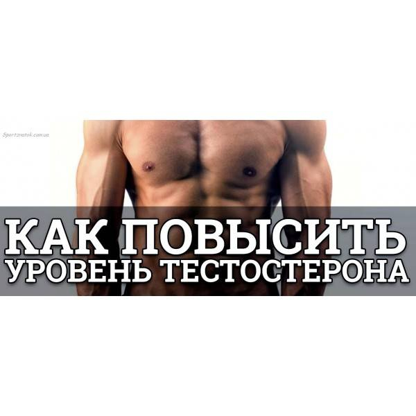 Повышение тестостерона у мужчин с помощью лекарственных препаратов и народных средств