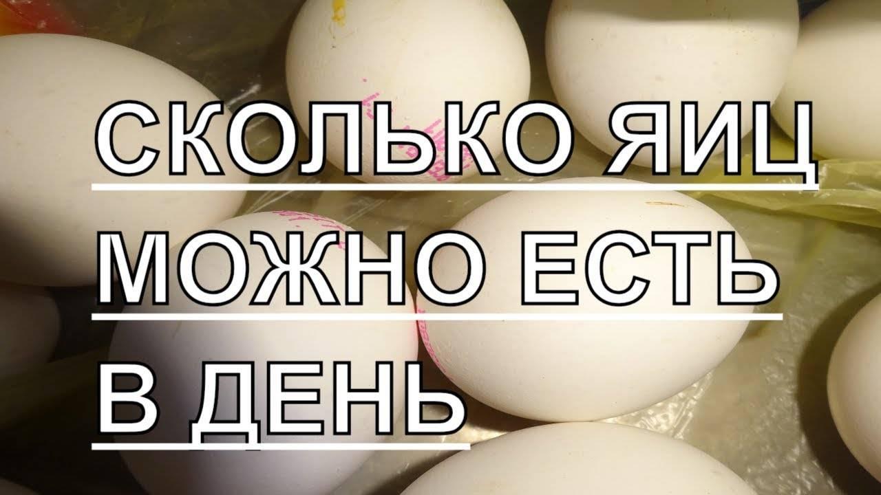 Сколько яиц можно есть в день — ребенку, взрослому, спортсмену