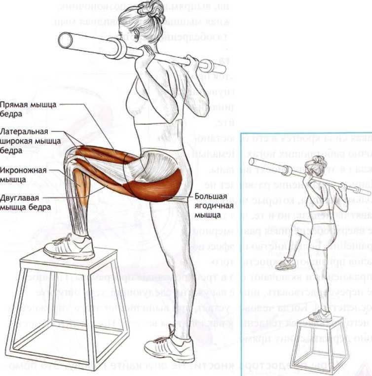Упражнения для совершенствования взрывной силы