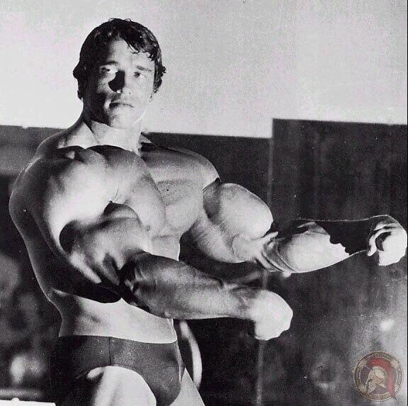 Домашняя тренировка из 1970-х от арнольда шварценеггера | livasteel