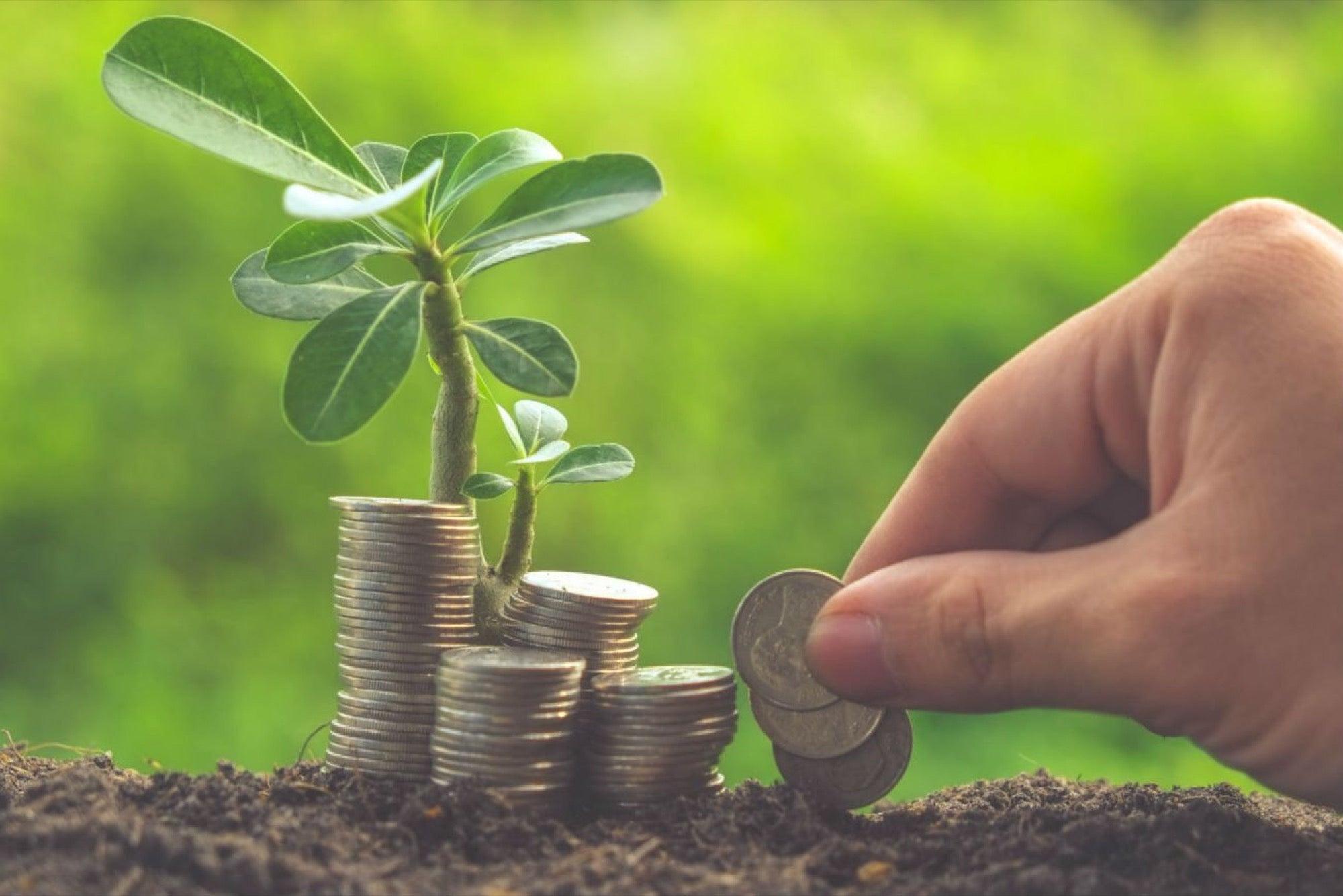 Топ 20 лучших способов инвестирования в 2020 году