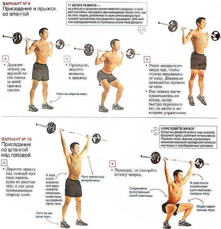 Советы для набора мышечной массы и силы