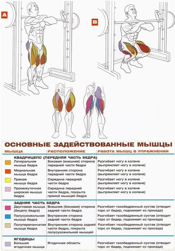 Упражнения на ноги в тренажерном зале для мужчин
