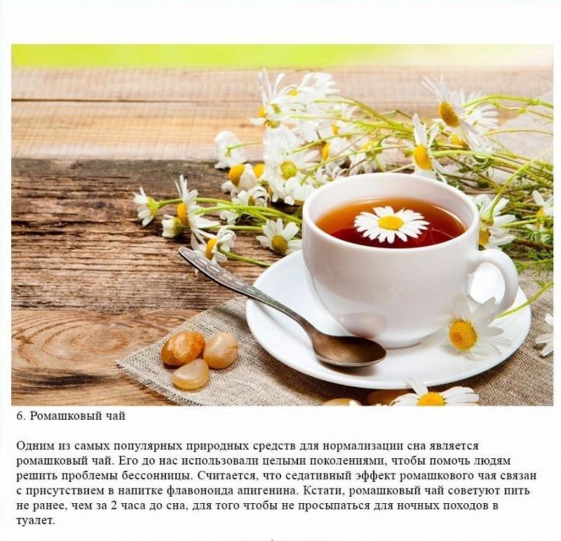 Ромашковый чай перед сном. чем полезен чай из ромашки перед сном?   здоровое питание