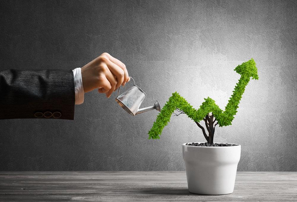 Инвестиции в бизнес: способы, плюсы и минусы, возможные риски + правила эффективного инвестирования
