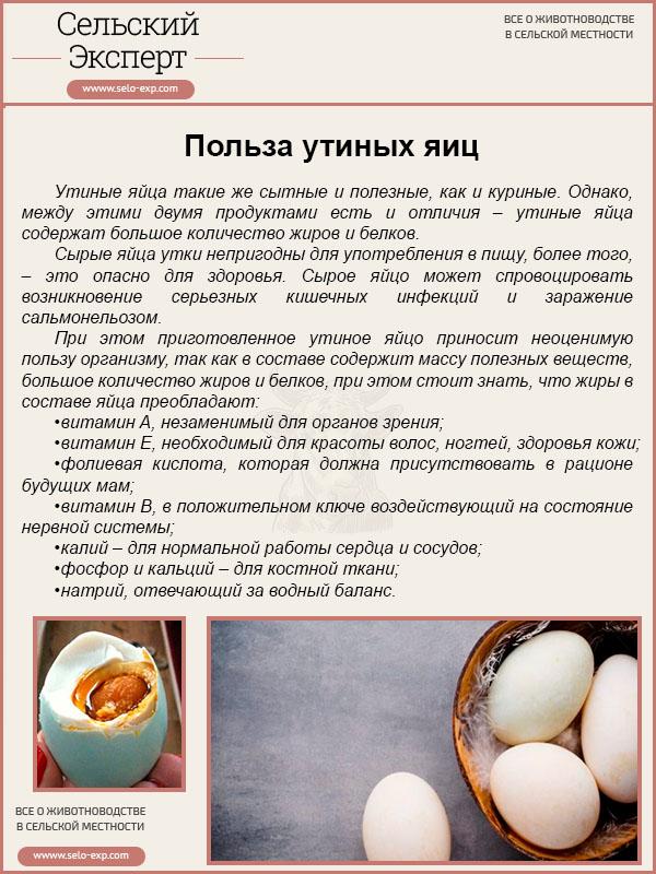 Яичный желток — полезные свойства и вред