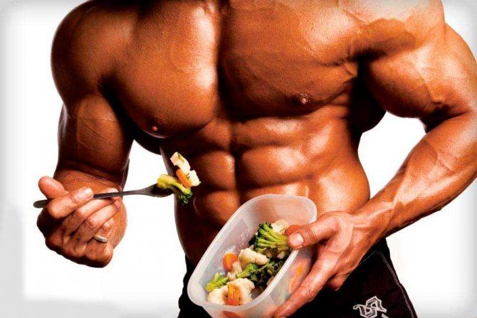 Сколько нужно белка для роста мышц