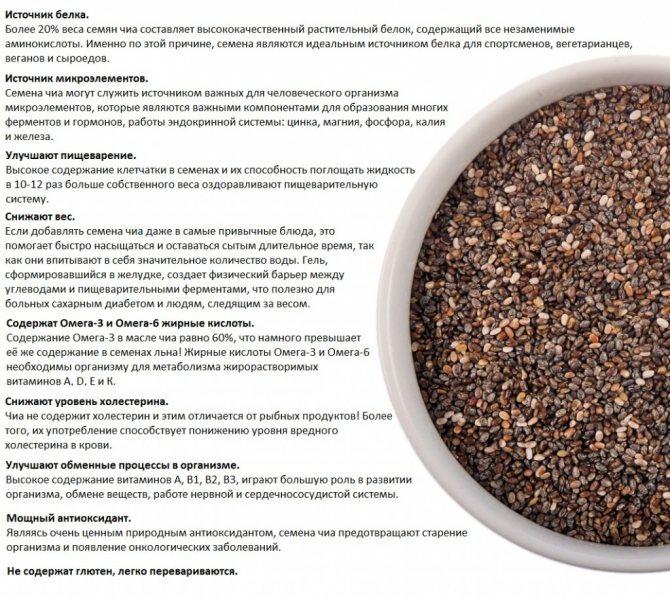 Семена чиа: полезные свойства и способы употребления для похудения