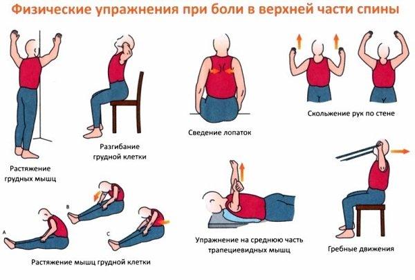 Йога для спины: 8 лучших асан для здорового позвоночника