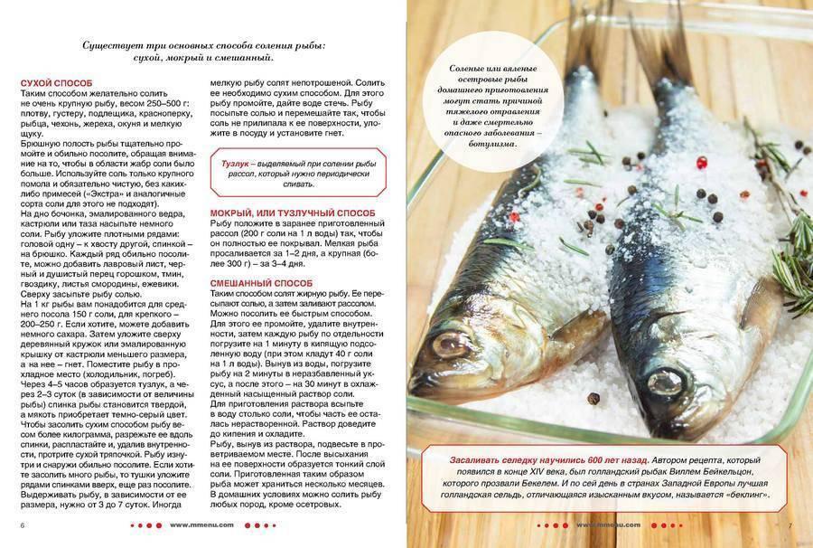 Как солить красную рыбу – 8 вкусных рецептов в домашних условиях