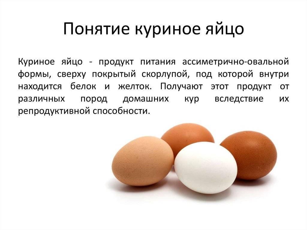 Куриные яйца: польза, в чем вред, диетические свойства, как выбрать, хранить и приготовить