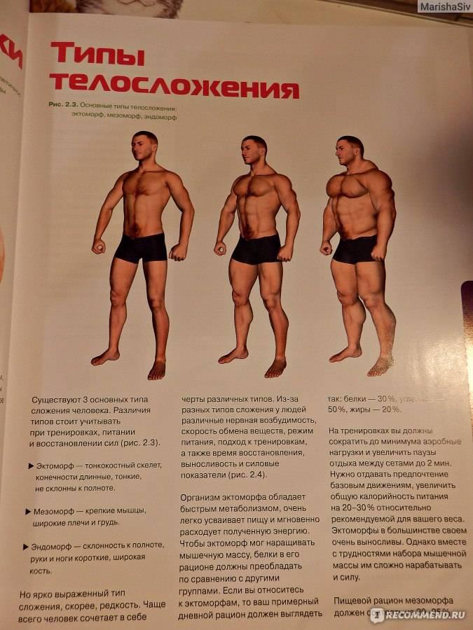 Эктоморф: гид по питанию и тренировкам для набора массы