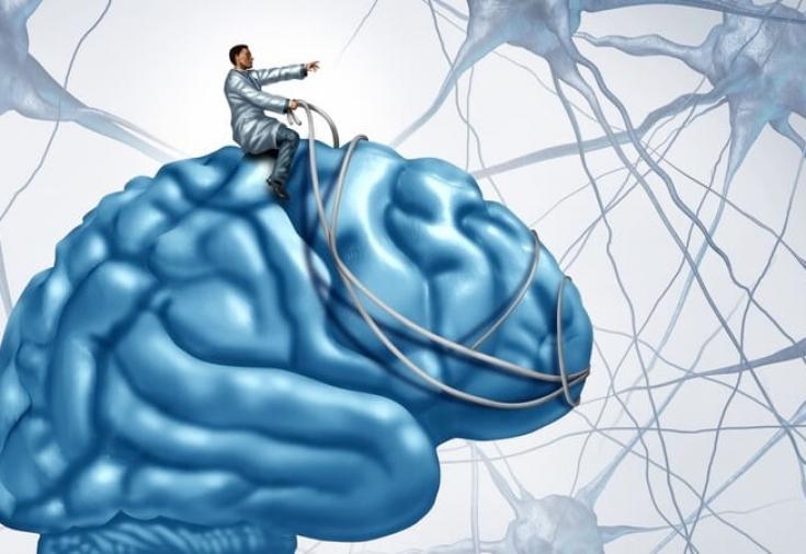 Нейромышечная связь с мозгом —как она влияет на эффективность тренировки?