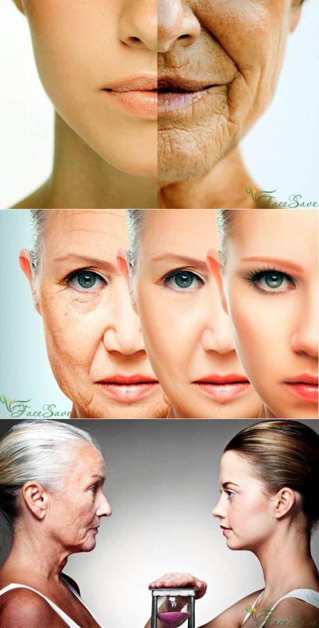 Почему стареет организм и как обмануть время