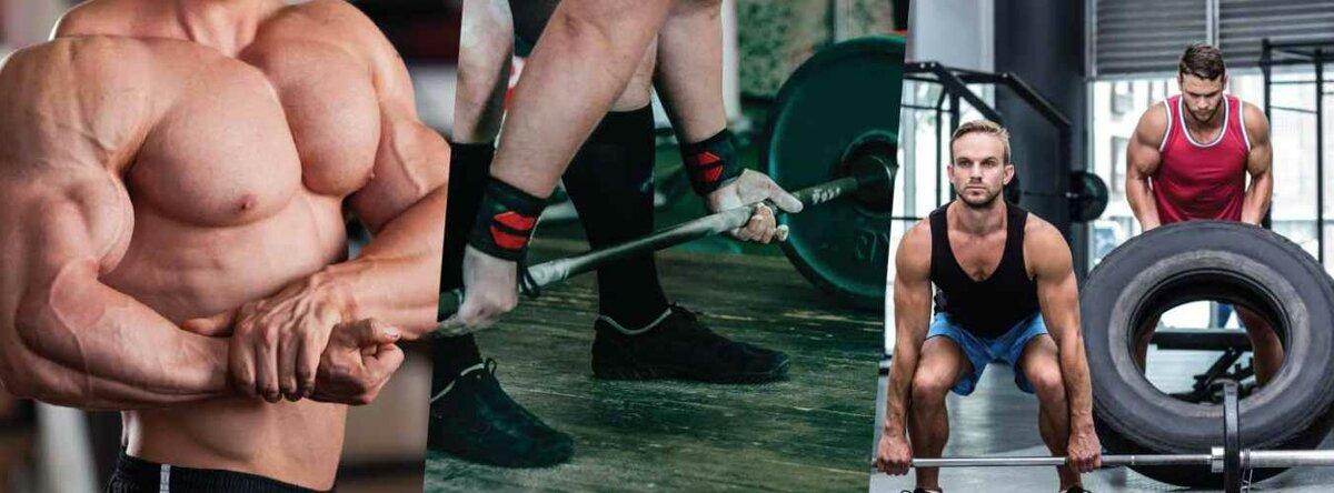 Фитнес, бодибилдинг, пауэрлифтинг - чем отличаются эти виды дисциплин
