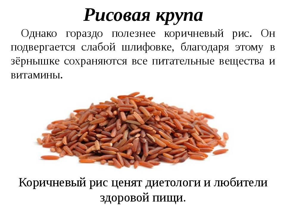Черный рис: польза и вред, калорийность на 100 граммов, способы приготовления
