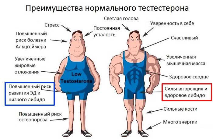 Дефицит тестостерона: причины, симптомы, лечение