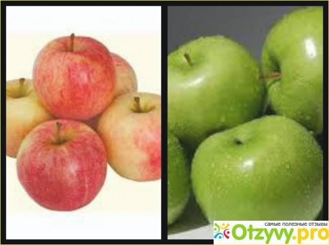 Сколько калорий в яблоке на самом деле: таблица с бжу всех сортов на 100 грамм