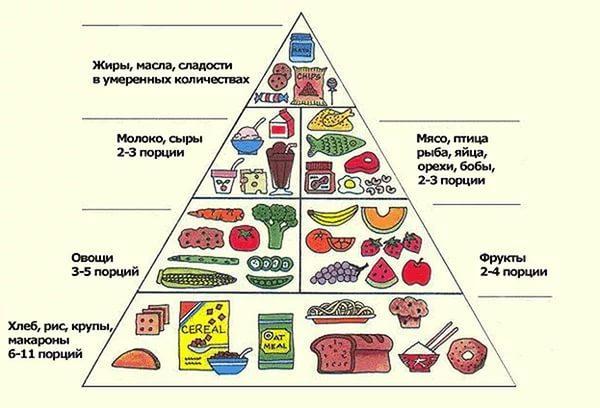 Полезные продукты для правильного питания, здоровья и похудения: список и таблица сочетаний