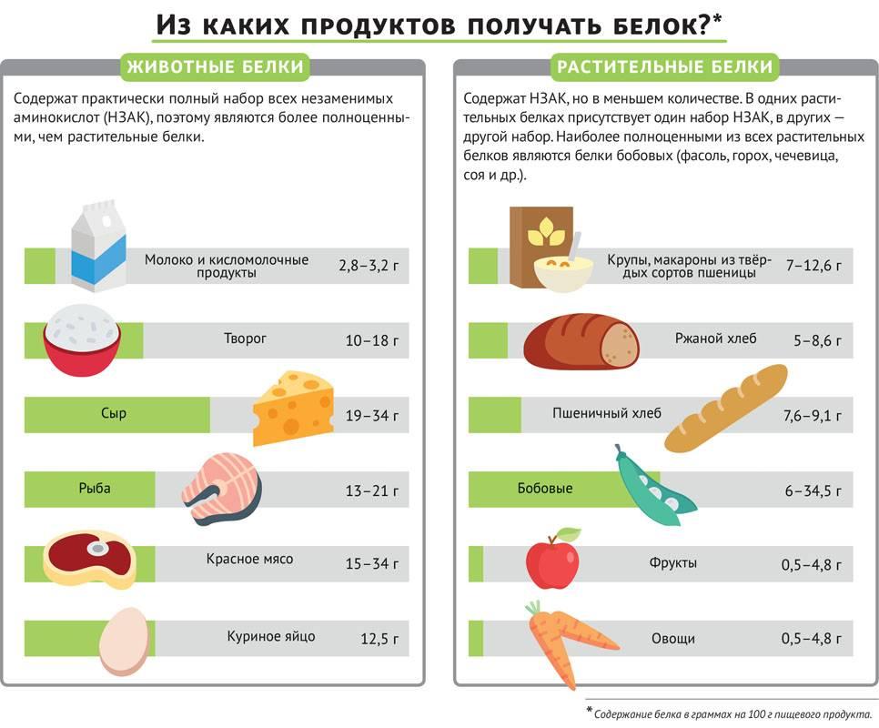 Продукты, содержащие белок – таблица (список)