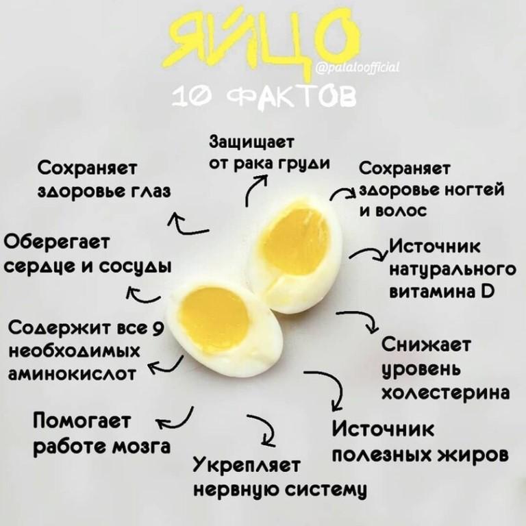 Сколько яиц можно съедать каждый день без вреда для здоровья