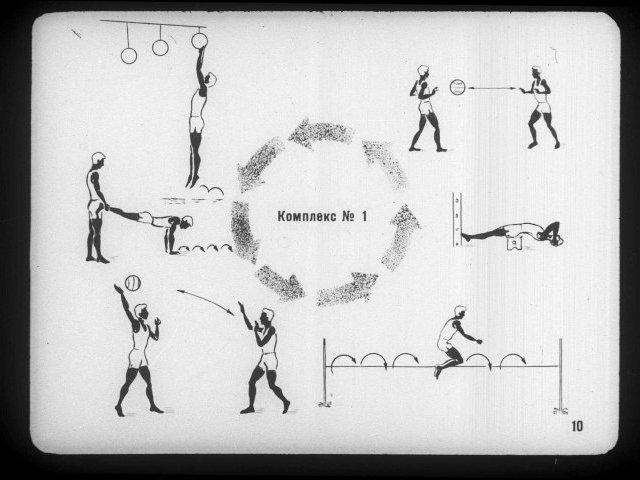 Методы спортивной тренировки: виды и в чем их суть