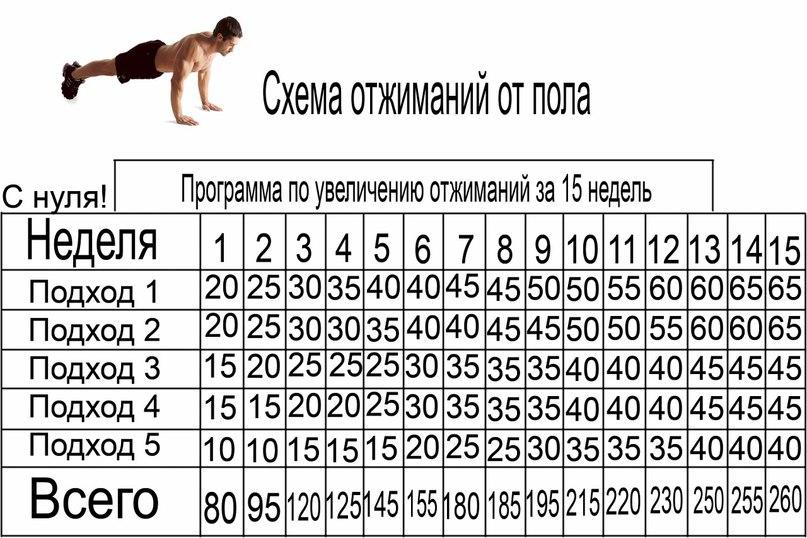 Программа отжиманий от пола. еженедельная схема отжиманий.