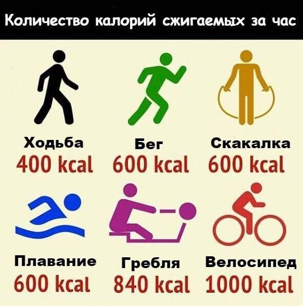 Сколько калорий сжигается при физических нагрузках таблица