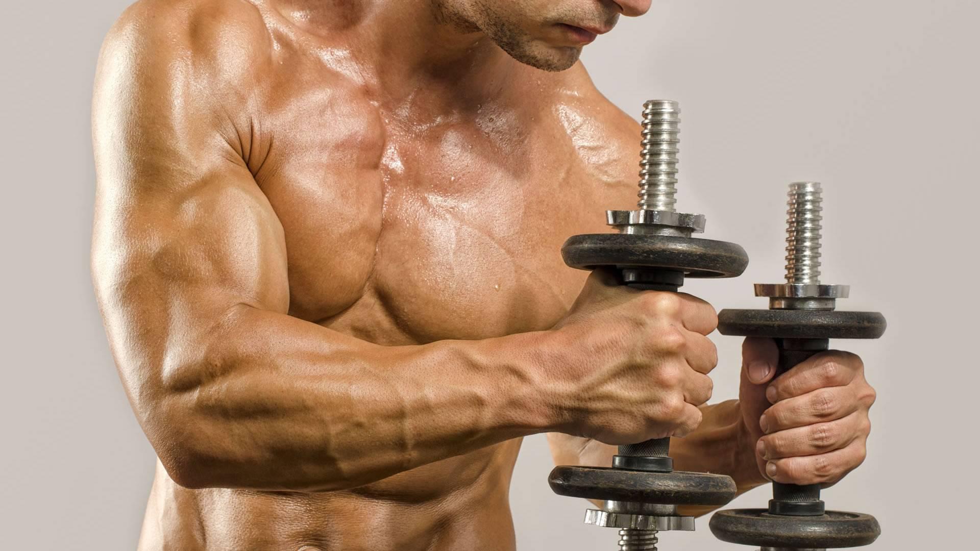 Набор мышечной массы: 5 стратегий | experience fitness