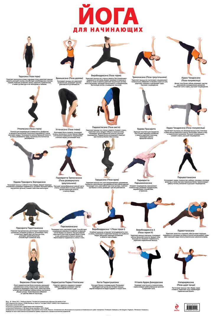 Хатха-йога для начинающих . первые позы и упражнения хатха-йоги в домашних условиях с видео-уроками