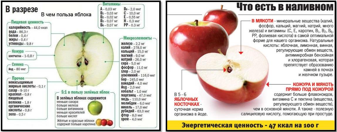 Сколько калорий в яблоке: польза и вред для организма, пищевая ценность, употребление при похудении