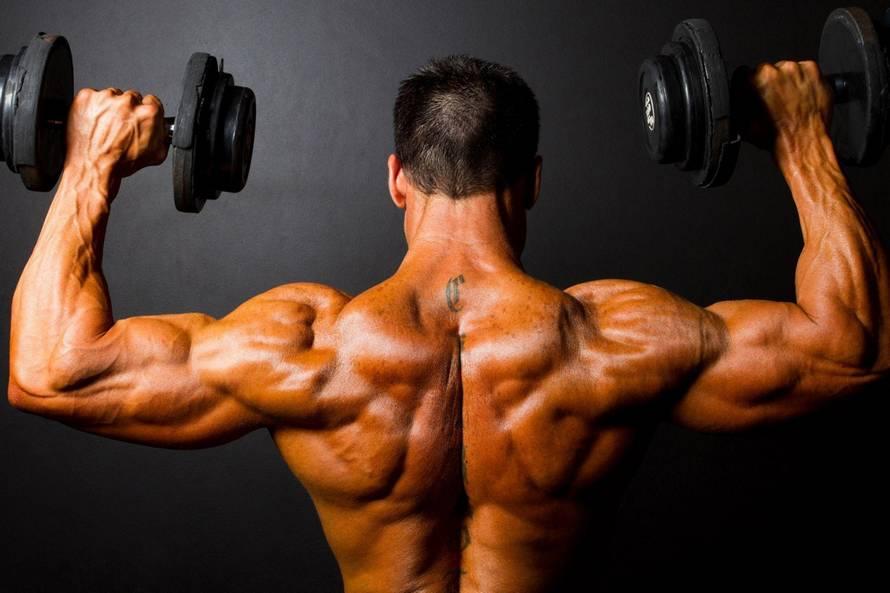 Как накачать спину: 5 программ тренировок - dailyfit