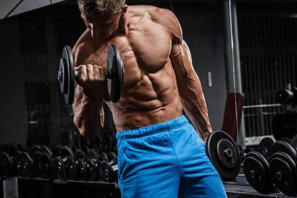 Программа тренировок в тренажерном зале для мужчин: комплекс силовых упражнений на неделю